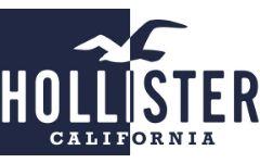 Logo Hollister Axsol