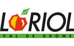 Logo Loriol Axsol